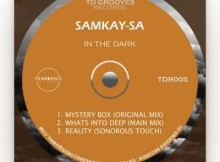 SamKay-SA Whats Into Deep Main Mix Mp3 Download SaFakaza