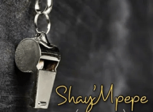 Shay'mpempe Amapiano Mix Mp3 Download SaFakaza