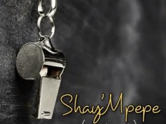 Shay'mpempe Amapiano Mix Mp3 Download SaFakaza