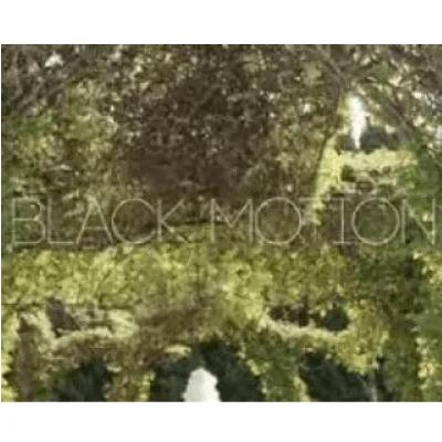 Black Motion Its You ft Missp Mp3 Download SaFakaza