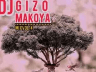 DJ Gizo Makoya Mix Vol. 14 Mp3 Download SaFakaza