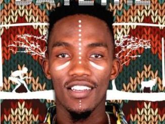 Mailo Music Ntliziyo ft Afro Brotherz & Bukeka Mp3 Download SaFakaza