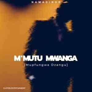 Namadingo – Mupfungwa Dzangu