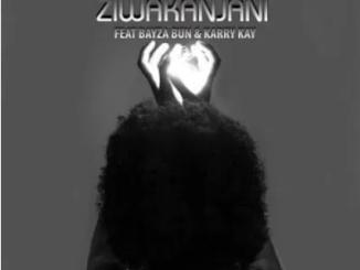 DJ Nitrox Ziwakanjani ft KarryKay & Bayza Bun Mp3 Download SaFakaza