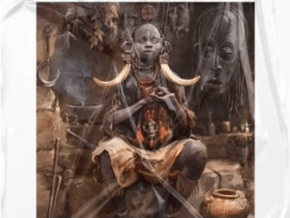 Echo Deep Tribalism Original Mix Mp3 Download SaFakaza