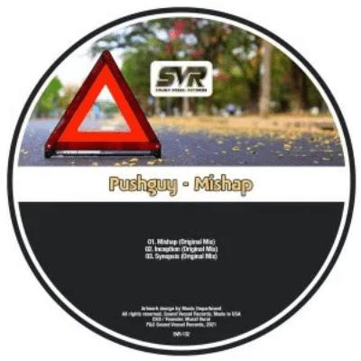 Pushguy Mishap EP Download