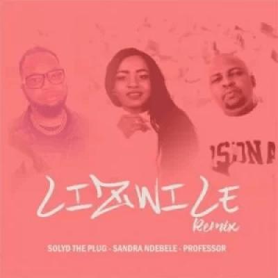 Solyd The Plug Lizwile Remix Mp3 Download SaFakaza
