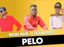 Waswa Moloi – Pelo ft Sesi Ma Dessy