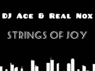 DJ Ace & Real Nox Strings of Joy Mp3 Download Safakaza