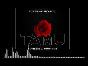Mabeste ft Mimi Mars – Tamu