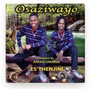Osaziwayo Ugugel' Okhambeni Download Mp3 Safakaza