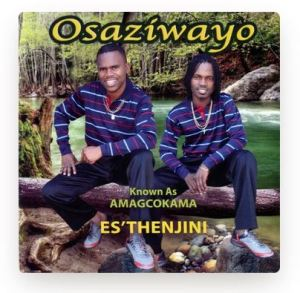 Osaziwayo Es'Thenjini Album Download Safakaza