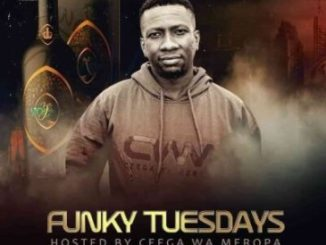 Ceega FunKY Tuesday (Woman's Month Special Mix) Mp3 Download Safakaza