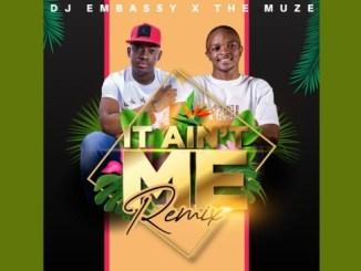 Dj Embassy X Muze It Ain't Me (Remix) Mp3 Download Safakaza