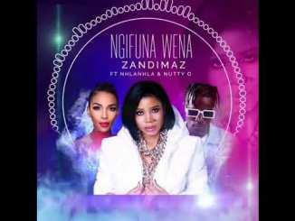 Dj Zandimaz Ft Nhlanhla & Nutty O – Ngifuna Wena