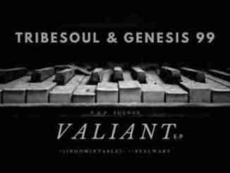 Tribesoul & Genesis 99 – Ndugu Ft. Housexcape