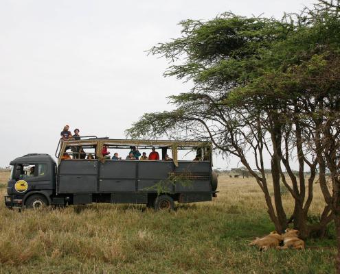Camion safari en Serengeti
