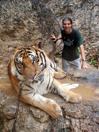 Tiger Temple, cerca de Bangkok