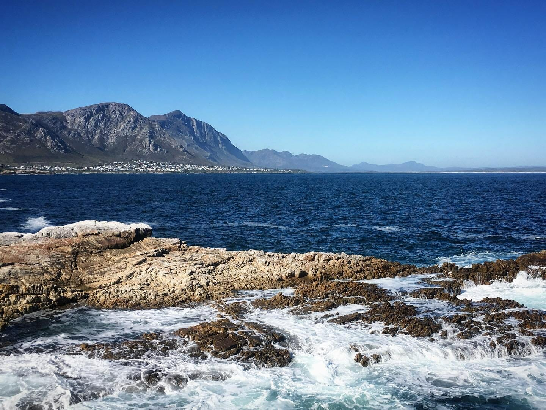 Whale Coast Südafrika