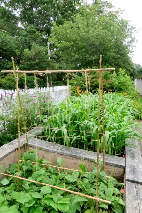 Building a climbing frame with bamboo