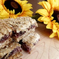 Strawberry, Rhubarb, Coconut, Date and Oat Squares