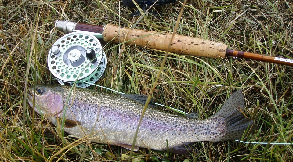 Better trout fishing fly position