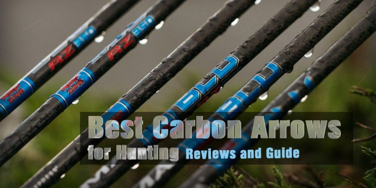 Best Carbon Arrows for Hunting