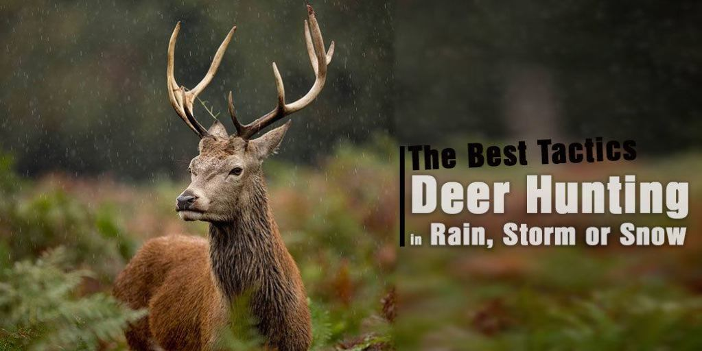 Deer Hunting in Rain, Storm or Snow