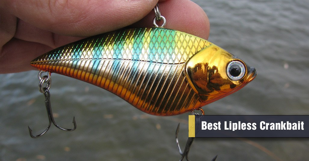 Best Lipless Crankbait for Bass Fishing