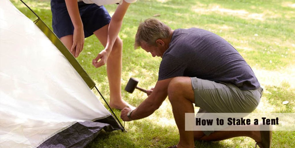 How to Stake a Tent 101