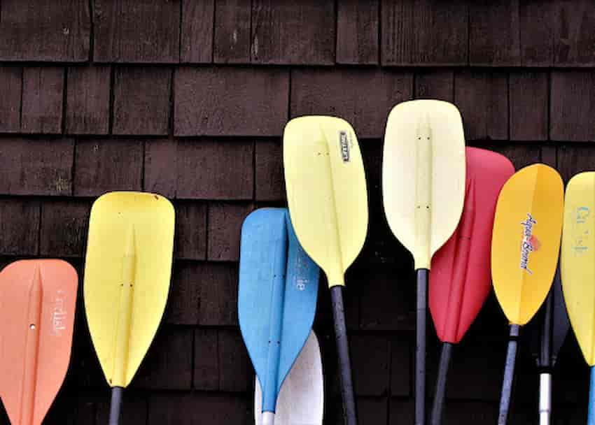 Best Cheap Paddle for Kayaking