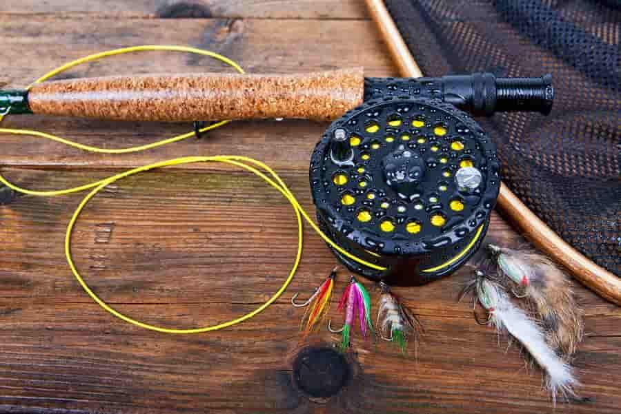 best fly line for streamers and bass