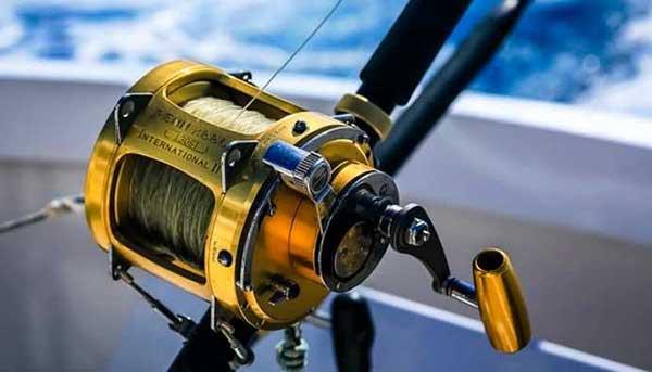 Major Categories of Fishing Reels