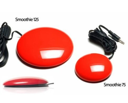SMOOTHIE SWITCH A smooth, low profile switch. Available in 2 sizes and blue and red colours