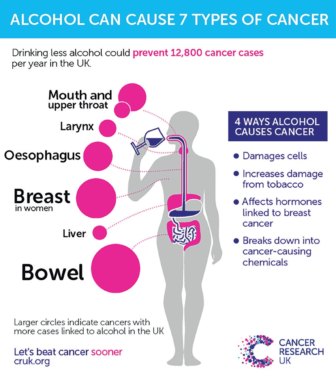 Alcohol Amp Cancer Fact Sheet Safe In Warwickshire