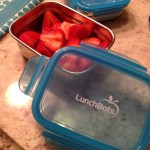 Review: Leakproof Lunch With LunchBots Clicks