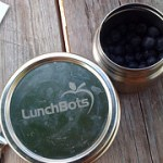 Lunchbots Rounds Food Storage (Giveaway!)