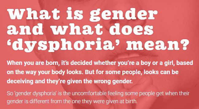 What is gender and what does 'dysphoria' mean? When you are born, it's decided whether you're a boy or a girl, based on the way your body looks. But for some people, looks can be deceiving and they're given the wrong gender.  So 'gender dysphoria' is the uncomfortable feeling some people get when their gender is different from the one they were given at birth.