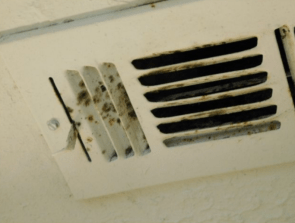 Possible mold or mildew at vent