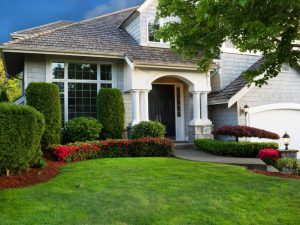 home with landscaping