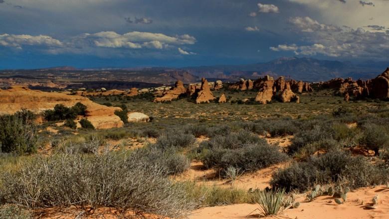 Sandstein Formationen auf dem Devils Garden Trail