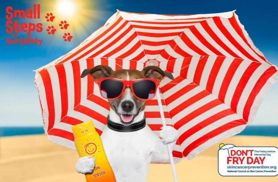 """Promote Sun Safety on """"Don't Fry Day"""": Skin Cancer Awareness and Prevention"""
