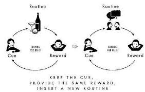 Image result for cue routine reward