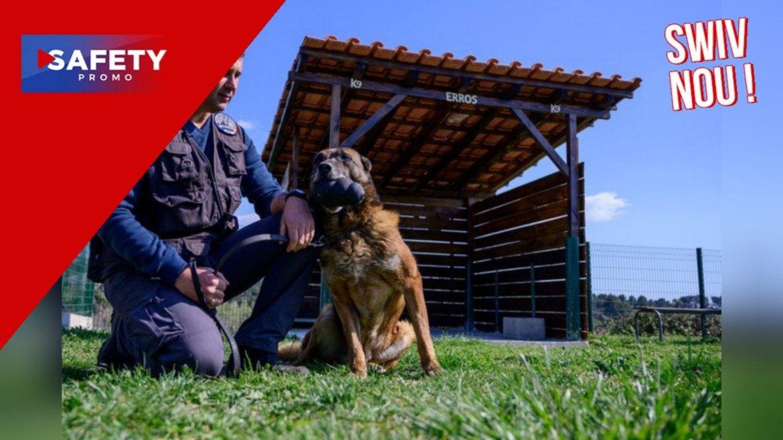 Marseille: une maison de retraite pour les chiens policiers, une première en France