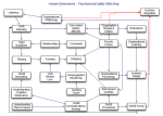 A Guide to Psychosocial Safety Skills