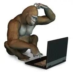 Perplexed Gorilla with Laptop