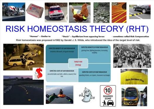 Homeostasis Poster 1 - D Collins
