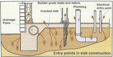 Metod Statement for Anti Termite
