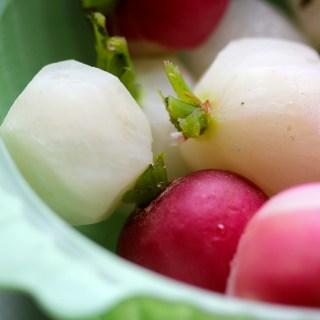 Sugar-glazed radishes
