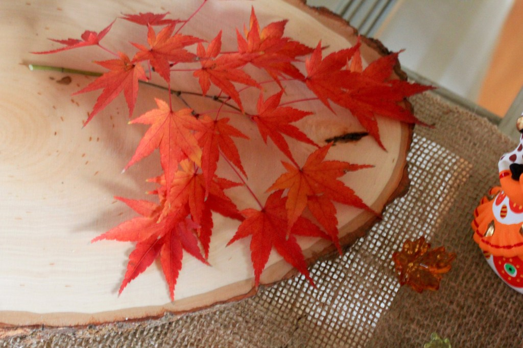 thanksgiving maple